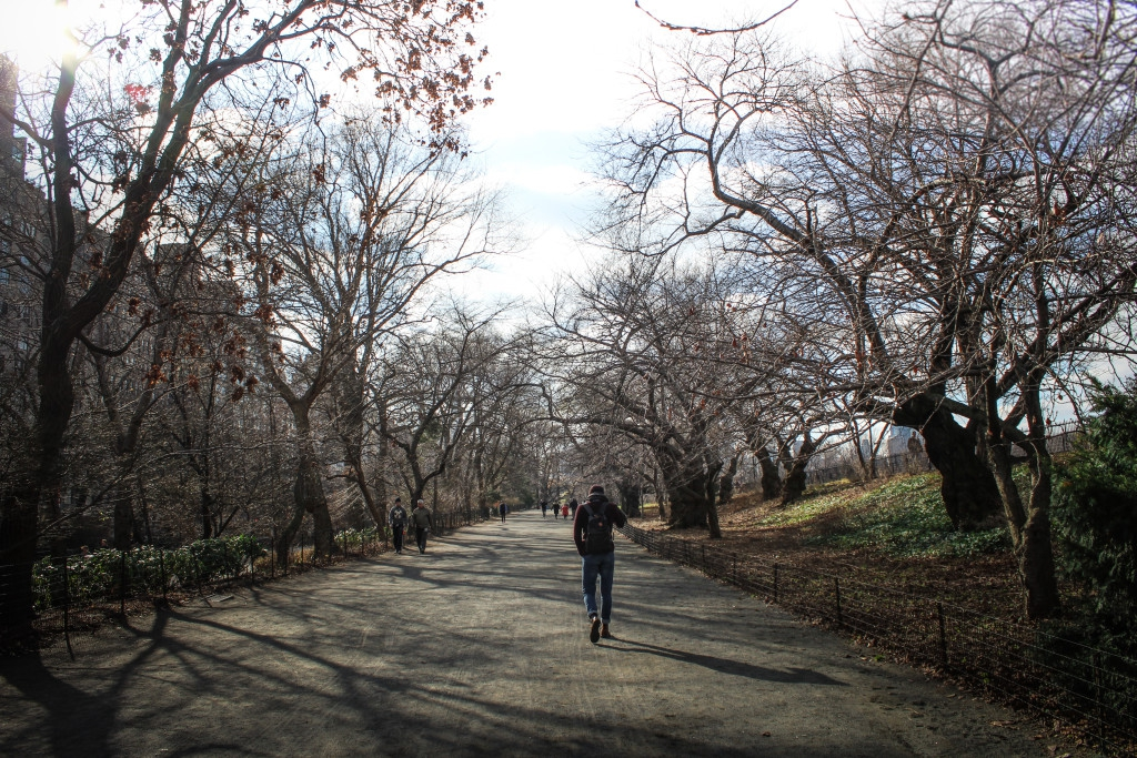central park (3 of 5)